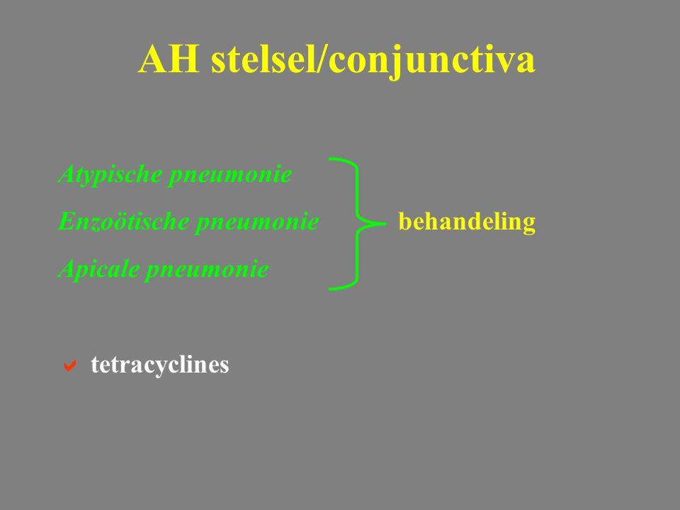 AH stelsel/conjunctiva