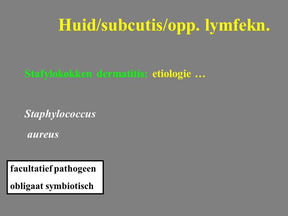 Huid/subcutis/opp. lymfekn.