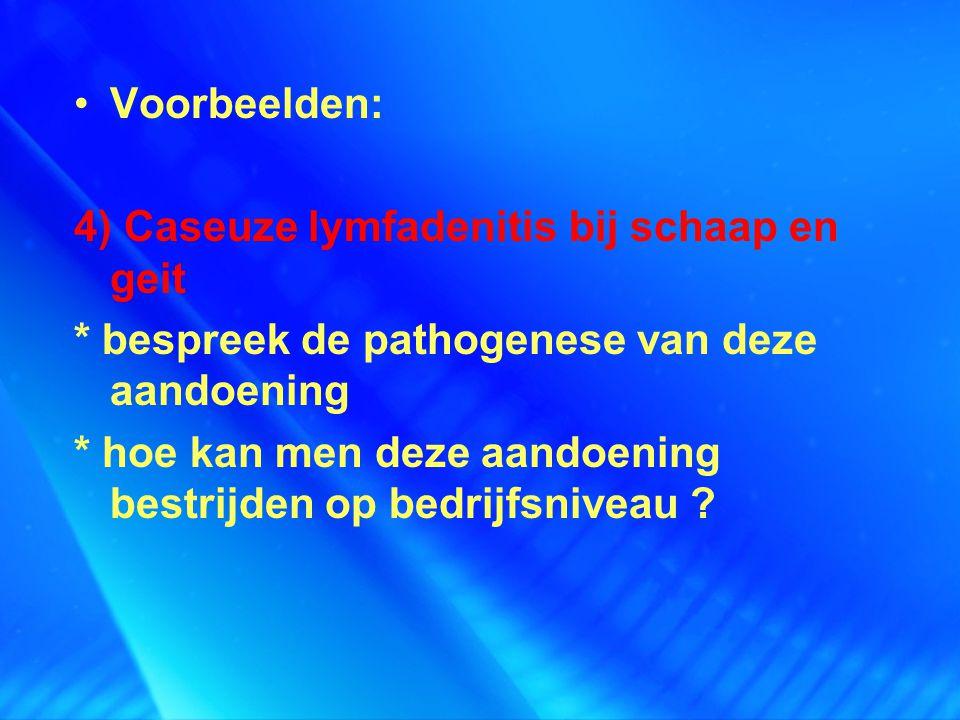 Voorbeelden: 4) Caseuze lymfadenitis bij schaap en geit. * bespreek de pathogenese van deze aandoening.