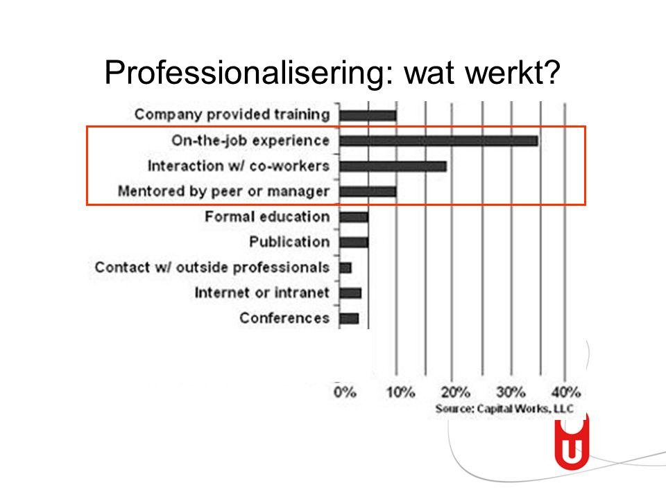 Professionalisering: wat werkt