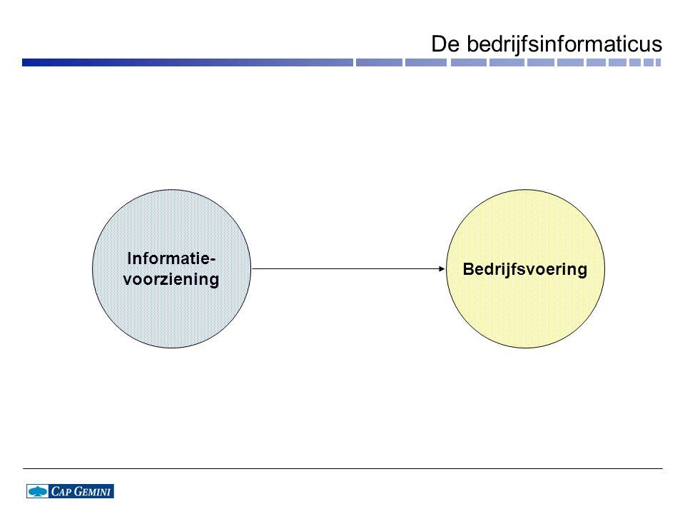 De bedrijfsinformaticus