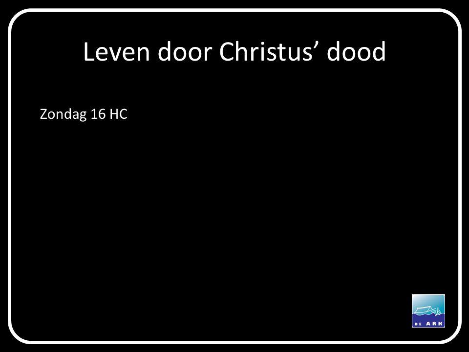 Leven door Christus' dood