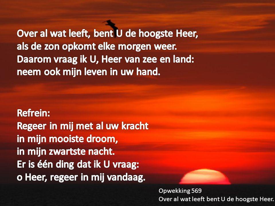Over al wat leeft, bent U de hoogste Heer, als de zon opkomt elke morgen weer. Daarom vraag ik U, Heer van zee en land: neem ook mijn leven in uw hand.