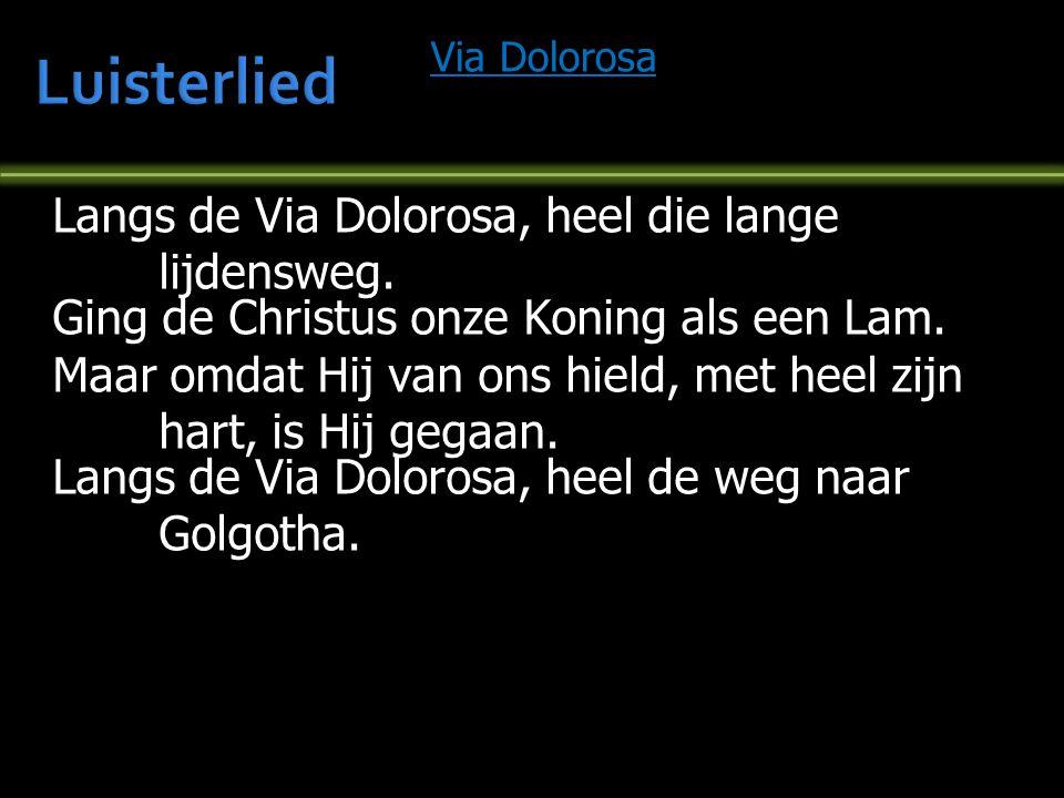 Luisterlied Langs de Via Dolorosa, heel die lange