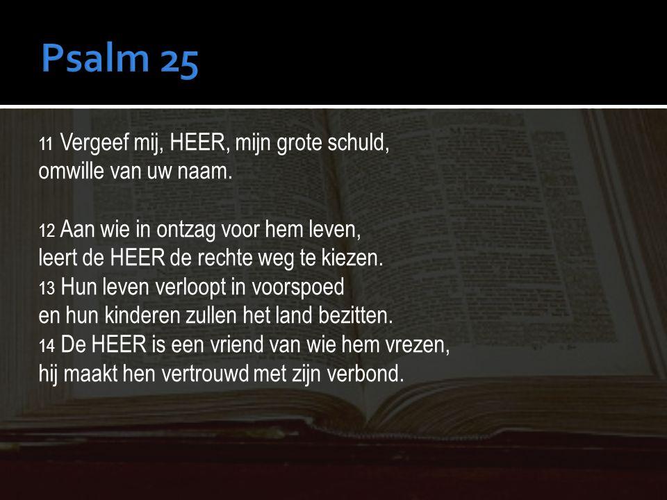 Psalm 25 omwille van uw naam. leert de HEER de rechte weg te kiezen.