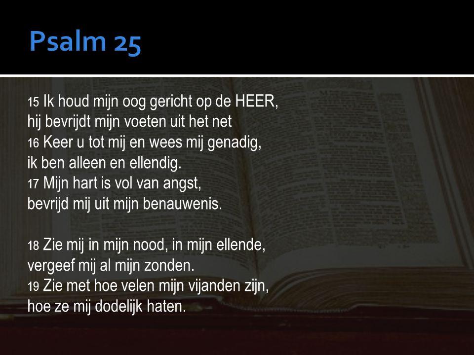 Psalm 25 hij bevrijdt mijn voeten uit het net