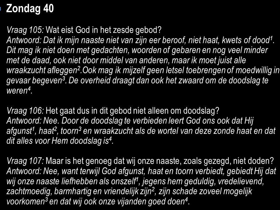 Zondag 40 Vraag 105: Wat eist God in het zesde gebod