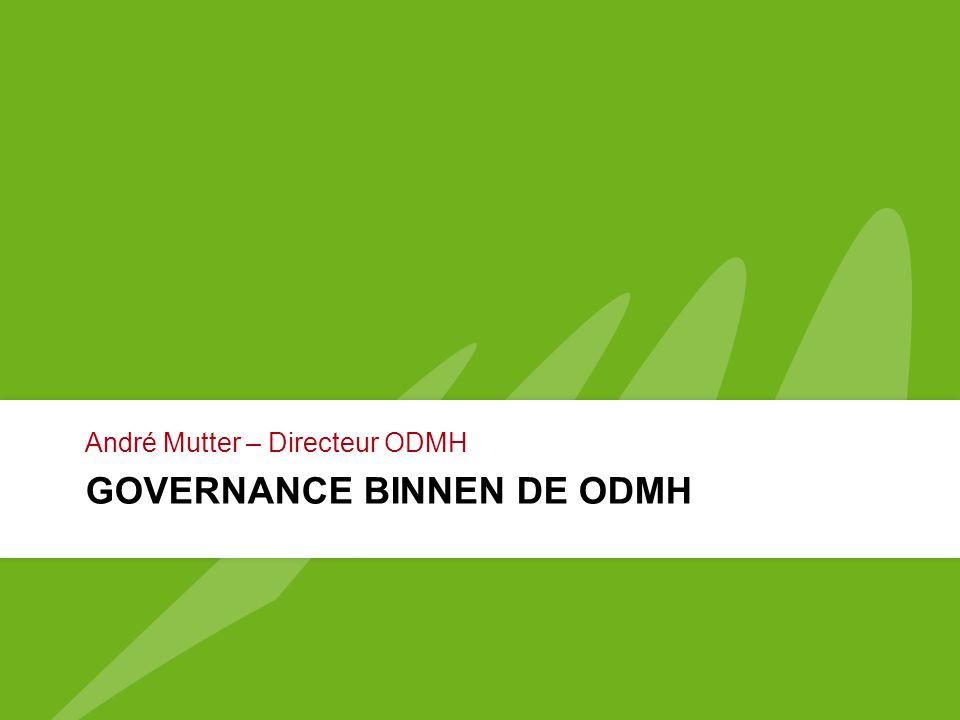 Governance binnen de ODMH
