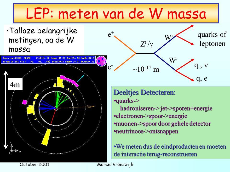 LEP: meten van de W massa