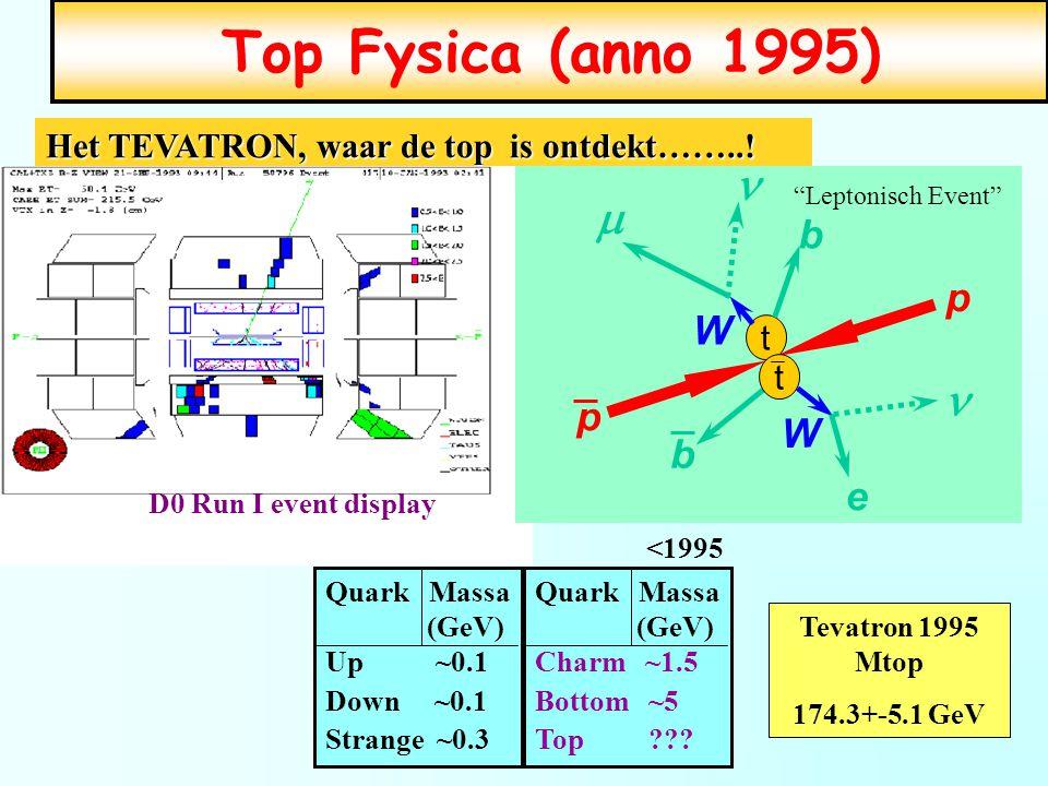 Top Fysica (anno 1995) m n b W p e