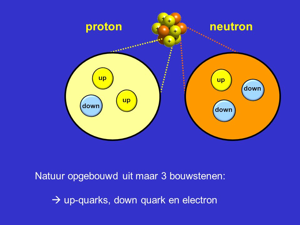 proton neutron up. up. down. up. down. down.