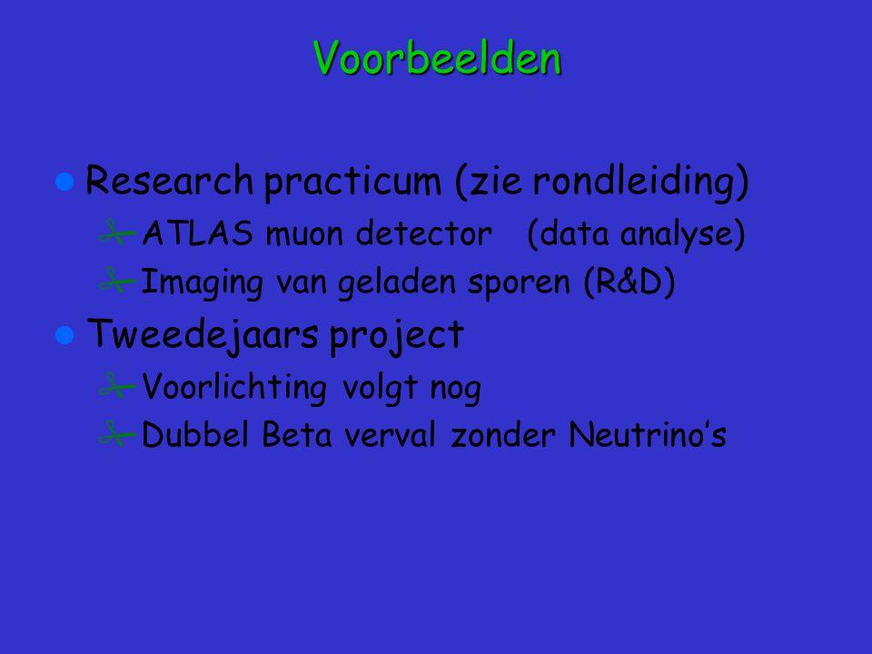 Voorbeelden Research practicum (zie rondleiding) Tweedejaars project