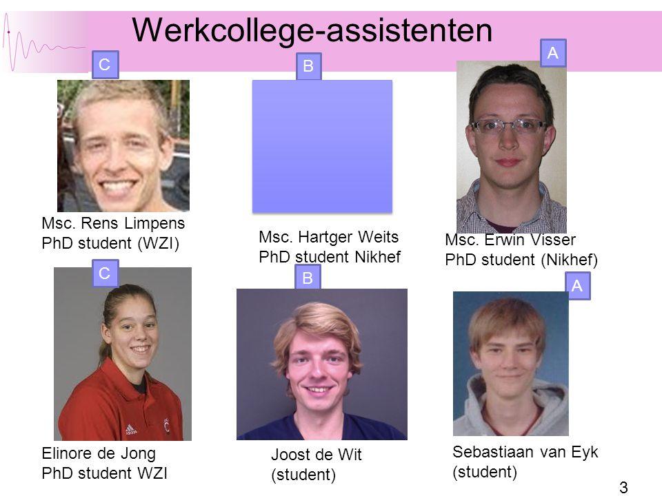 Werkcollege-assistenten