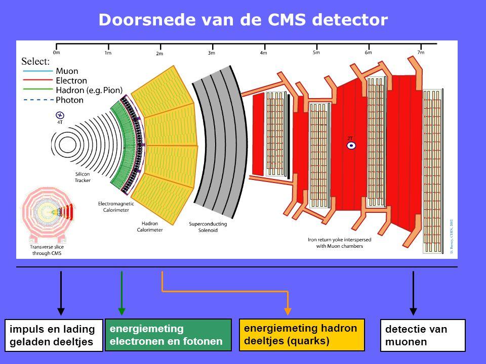 Doorsnede van de CMS detector