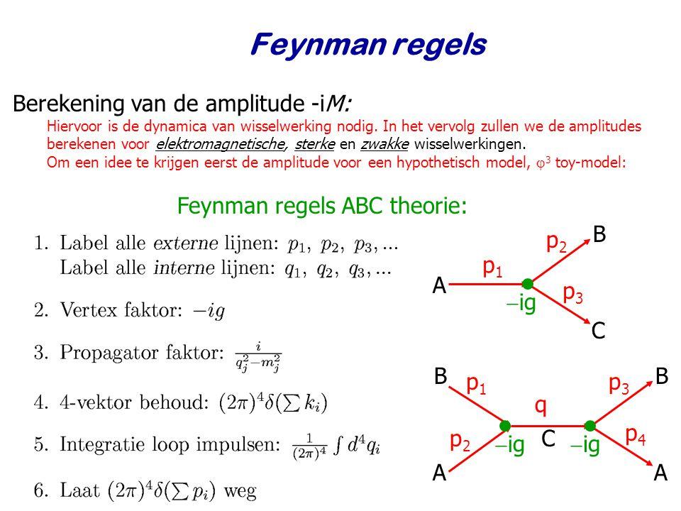 Feynman regels Berekening van de amplitude -iM: