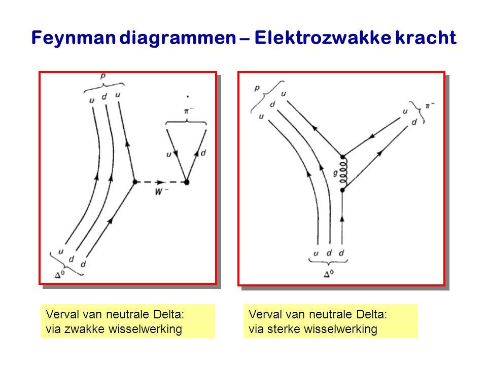 Feynman diagrammen – Elektrozwakke kracht