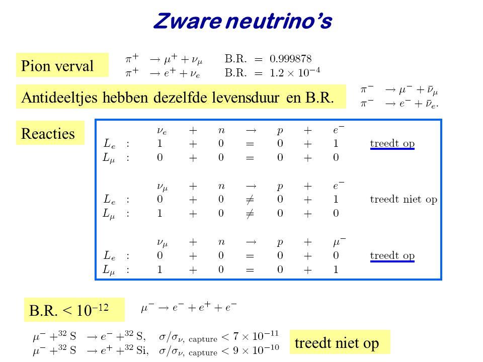 Zware neutrino's Pion verval
