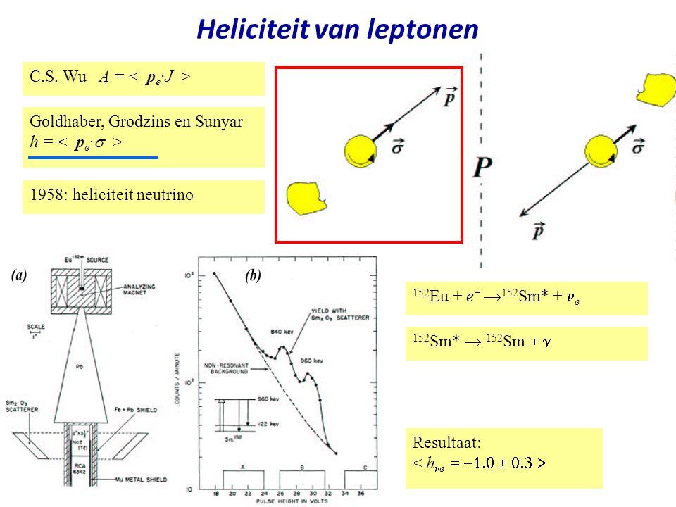 Heliciteit van leptonen