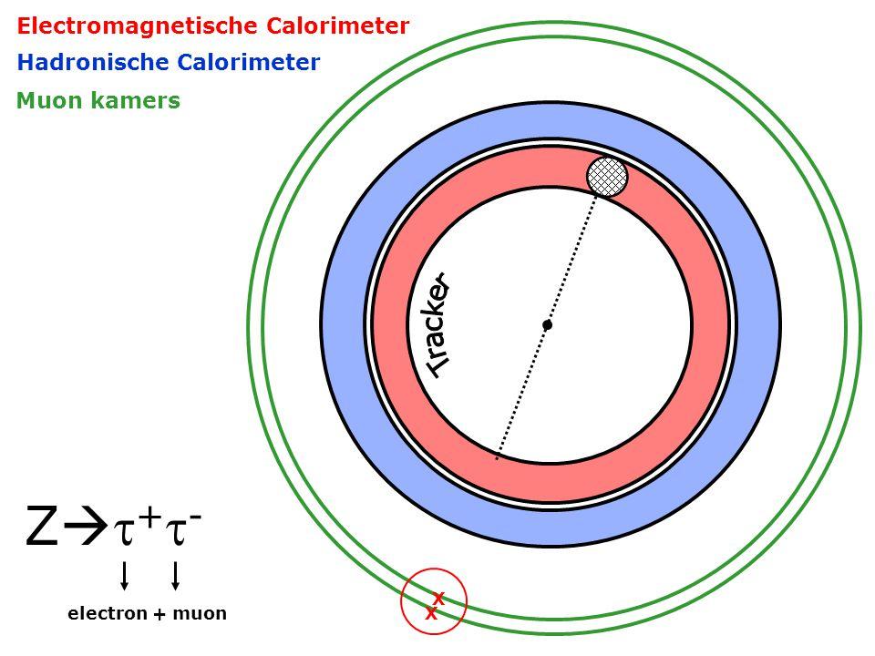 Hadronische Calorimeter