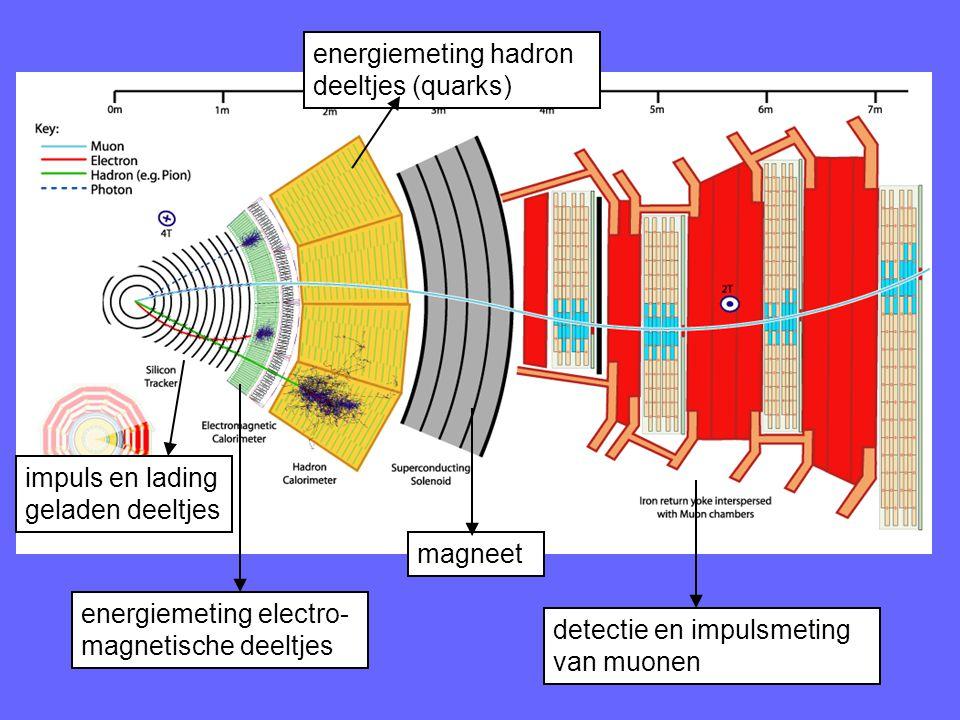 energiemeting hadron deeltjes (quarks)