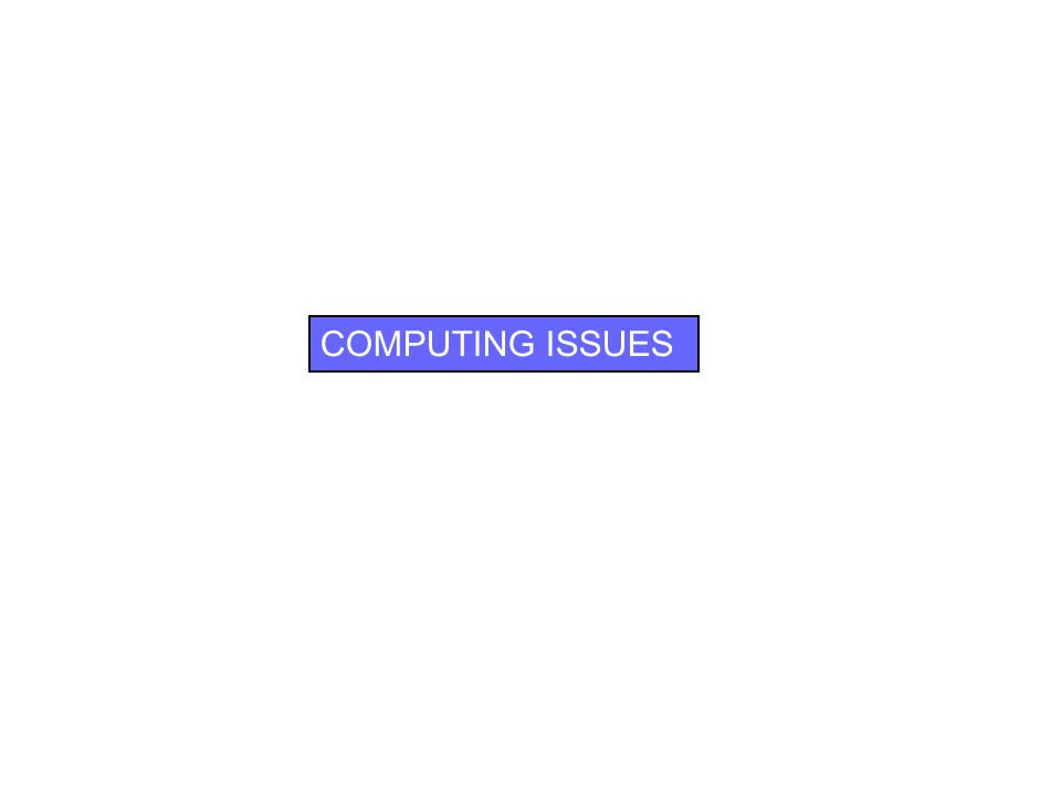 COMPUTING ISSUES