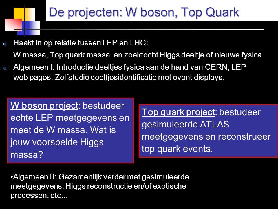 De projecten: W boson, Top Quark