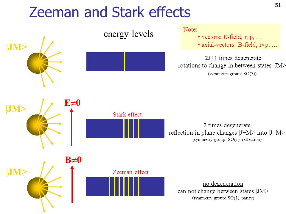 Zeeman and Stark effects