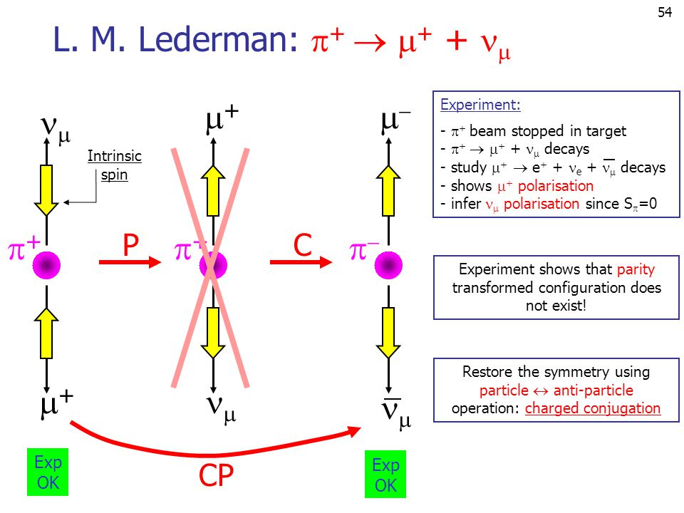 L. M. Lederman: +  + +  + +     C CP P Exp Exp OK OK