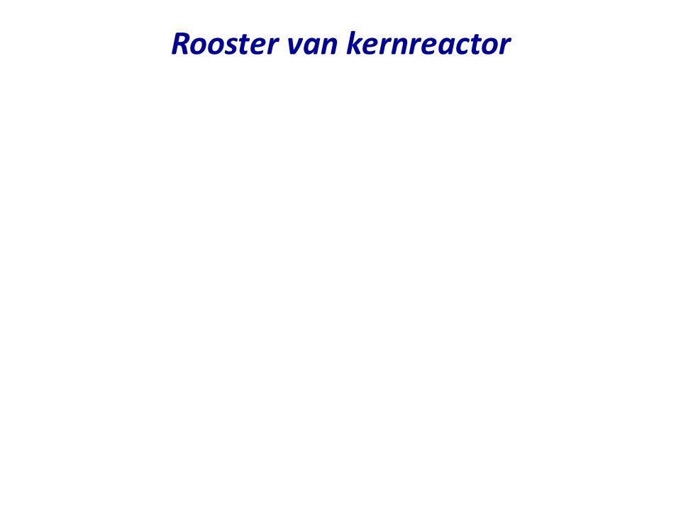 Rooster van kernreactor