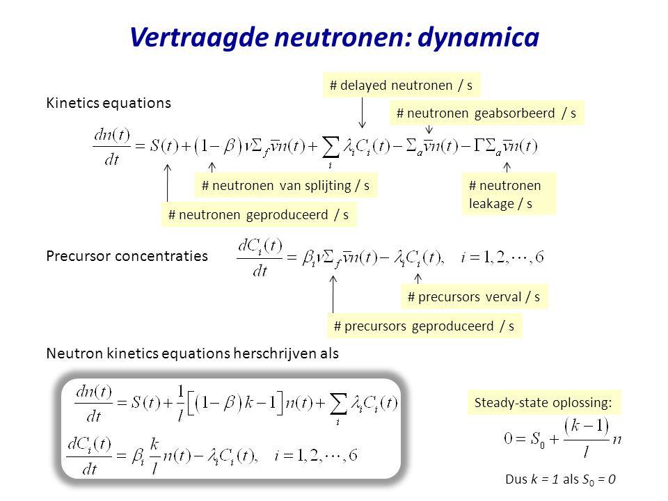 Vertraagde neutronen: dynamica