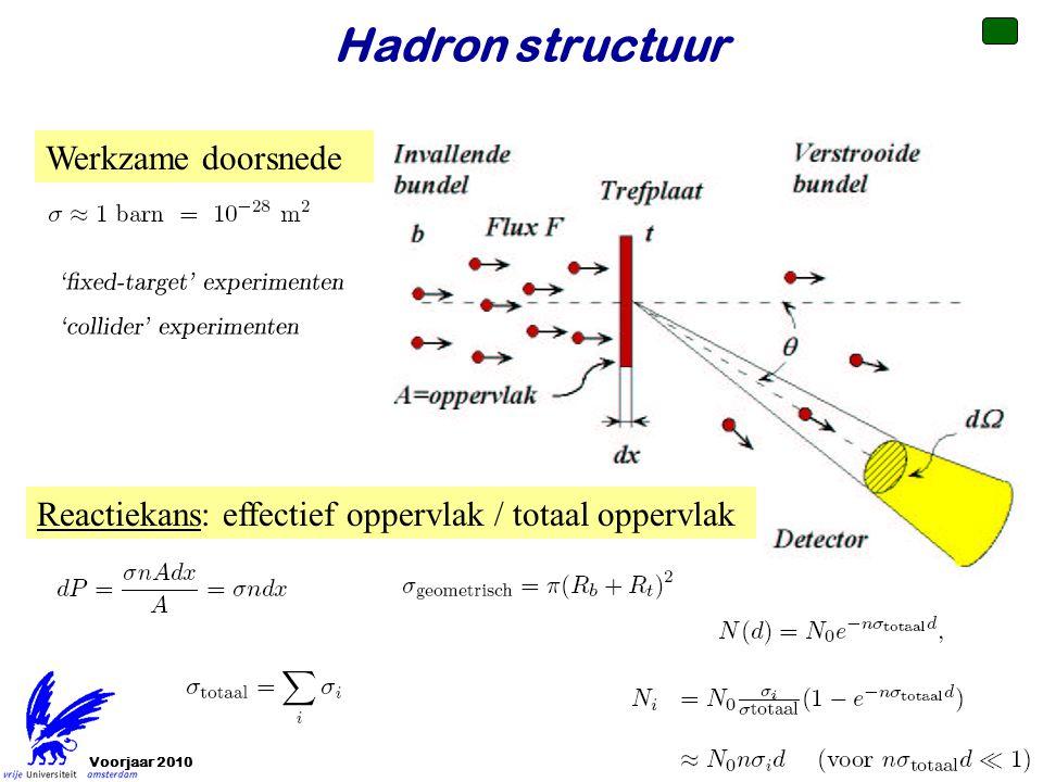Hadron structuur Werkzame doorsnede
