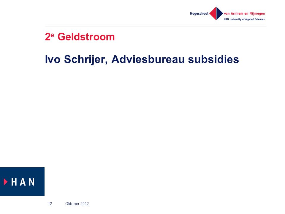 Ivo Schrijer, Adviesbureau subsidies