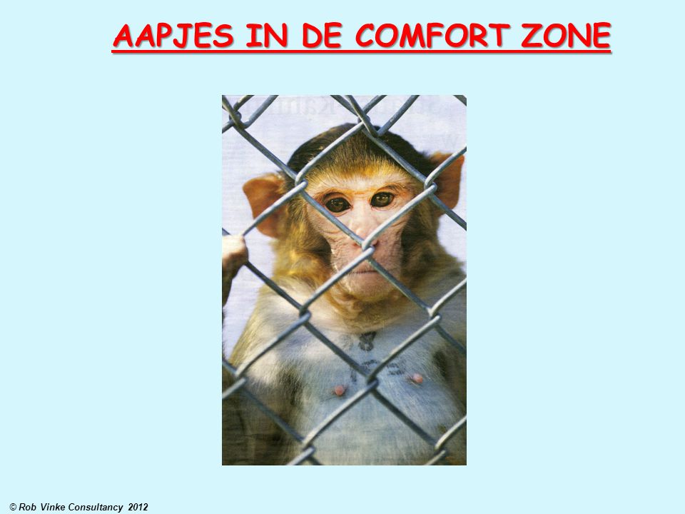 AAPJES IN DE COMFORT ZONE © Rob Vinke Consultancy 2012