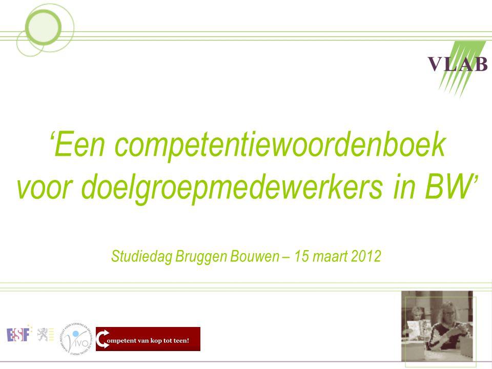 'Een competentiewoordenboek voor doelgroepmedewerkers in BW' Studiedag Bruggen Bouwen – 15 maart 2012