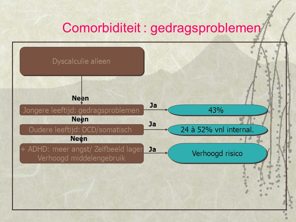 Comorbiditeit : gedragsproblemen