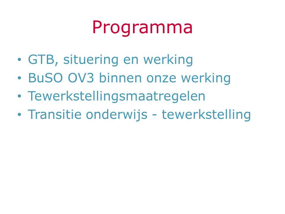 Programma GTB, situering en werking BuSO OV3 binnen onze werking