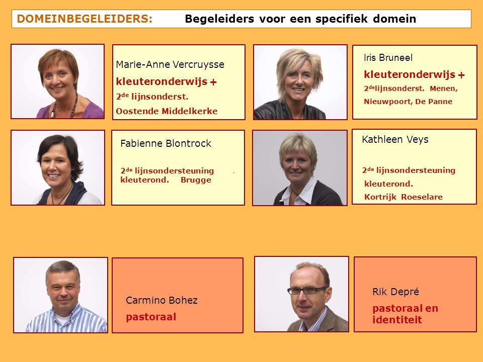 DOMEINBEGELEIDERS: Begeleiders voor een specifiek domein