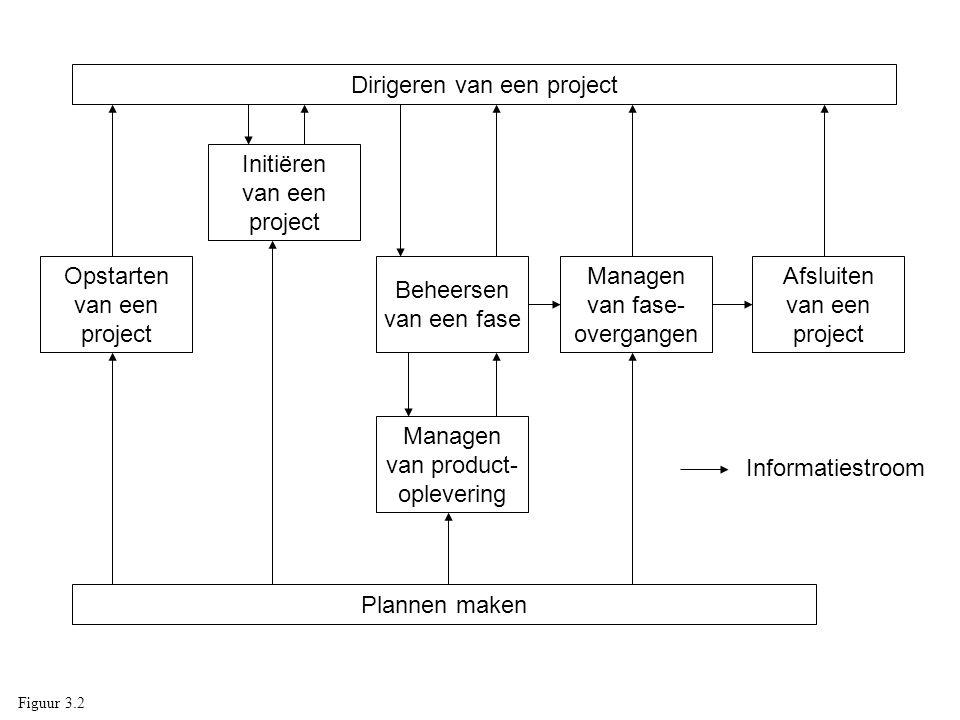 Dirigeren van een project