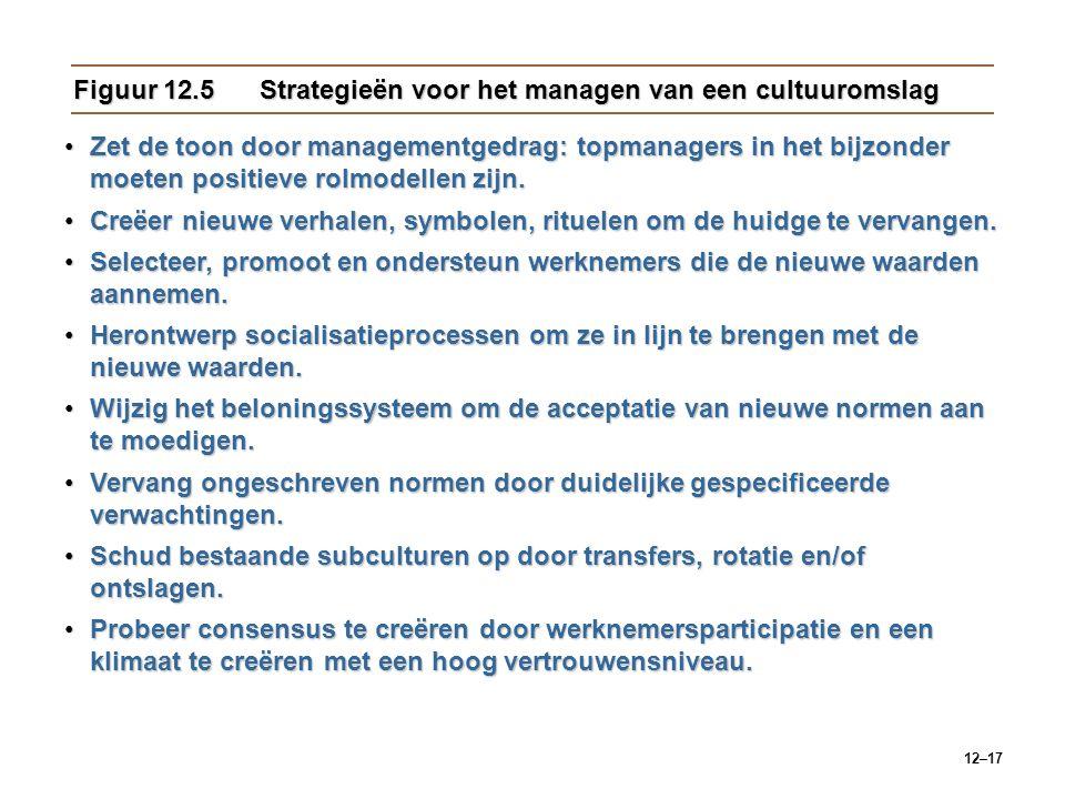 Figuur 12.5 Strategieën voor het managen van een cultuuromslag
