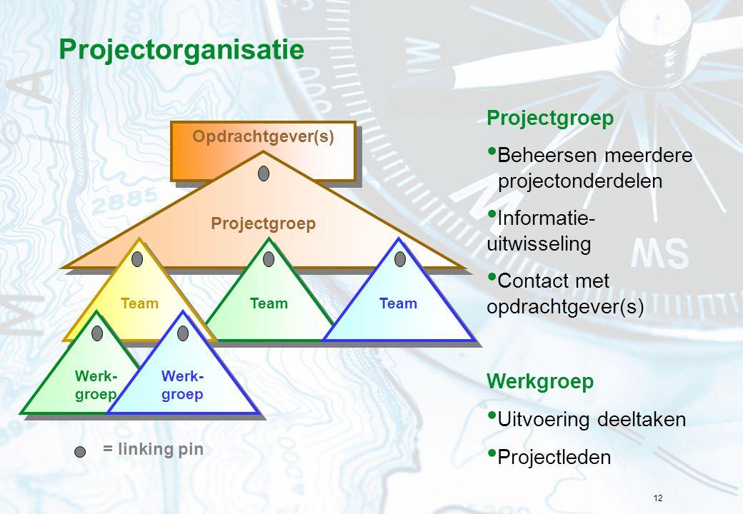 Projectorganisatie Projectgroep Beheersen meerdere projectonderdelen