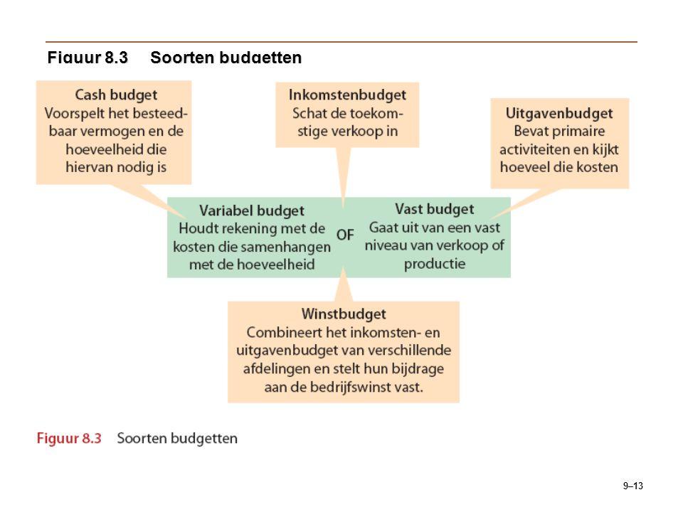 Figuur 8.3 Soorten budgetten