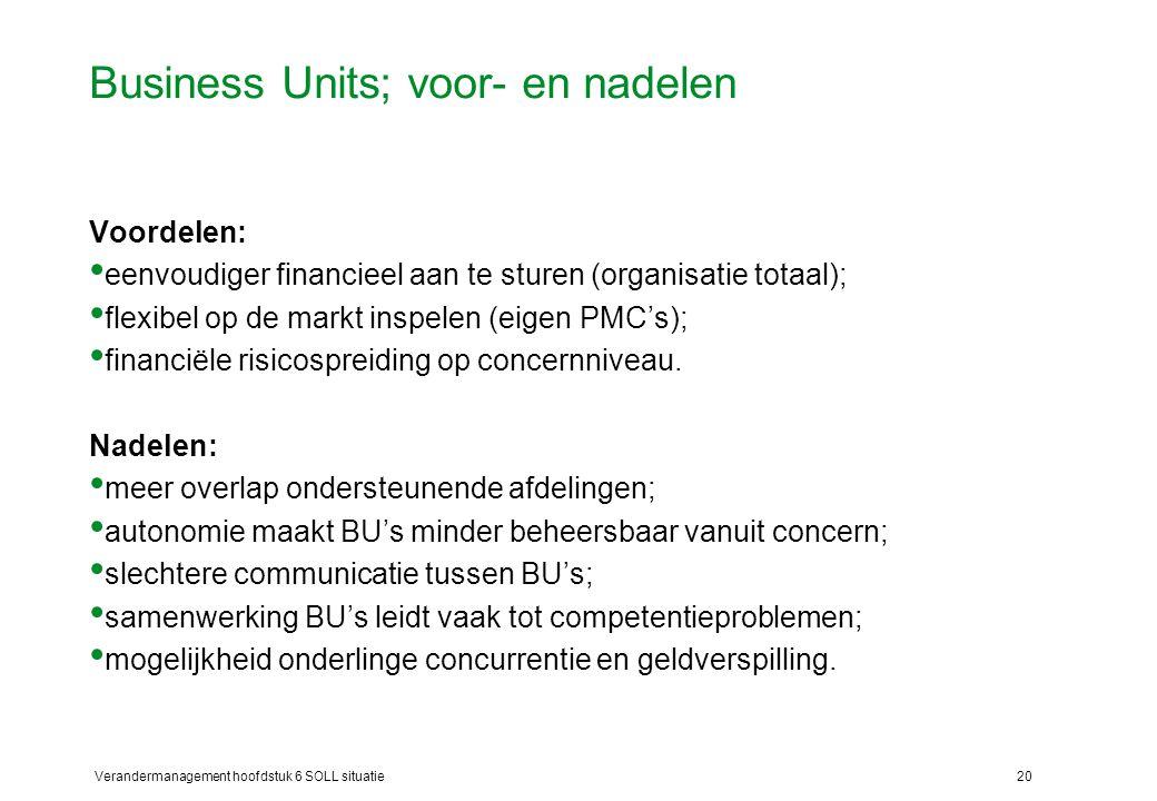 Business Units; voor- en nadelen