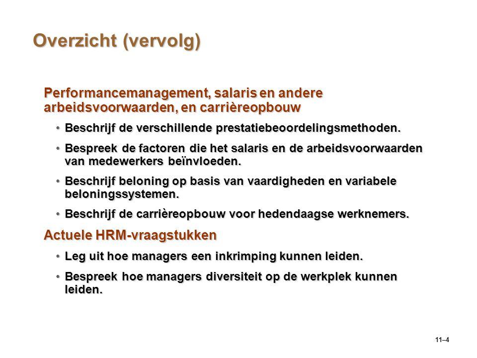 Overzicht (vervolg) Performancemanagement, salaris en andere arbeidsvoorwaarden, en carrièreopbouw.