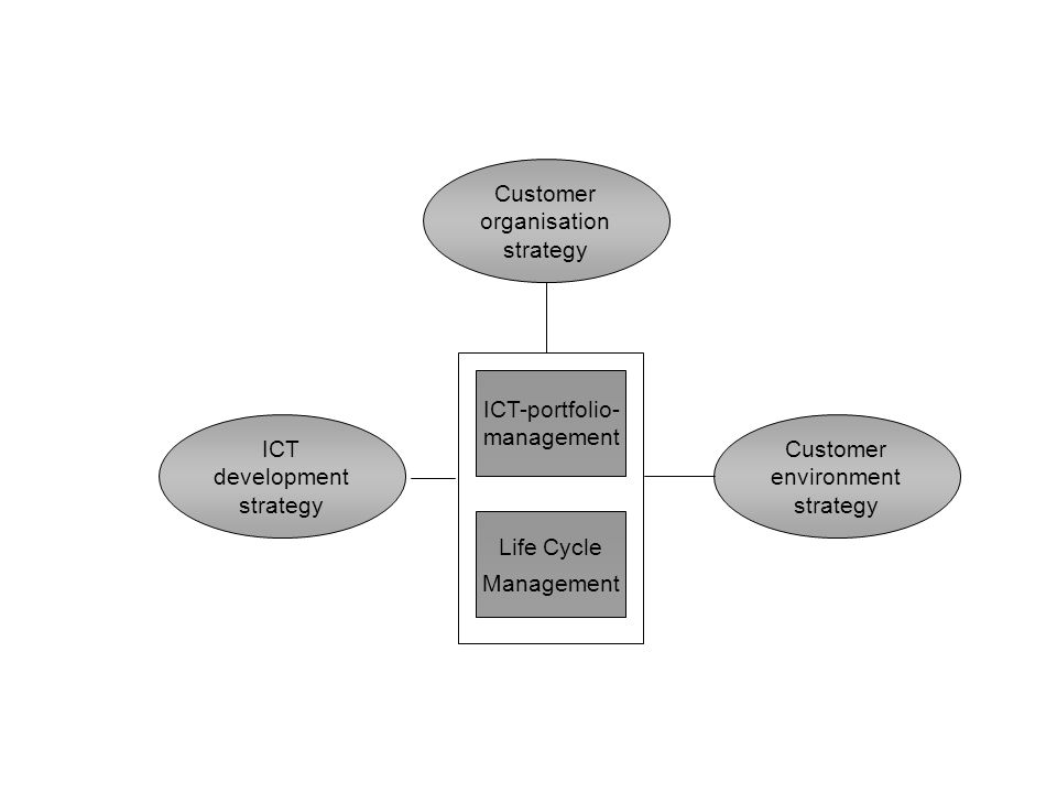 Customer organisation strategy