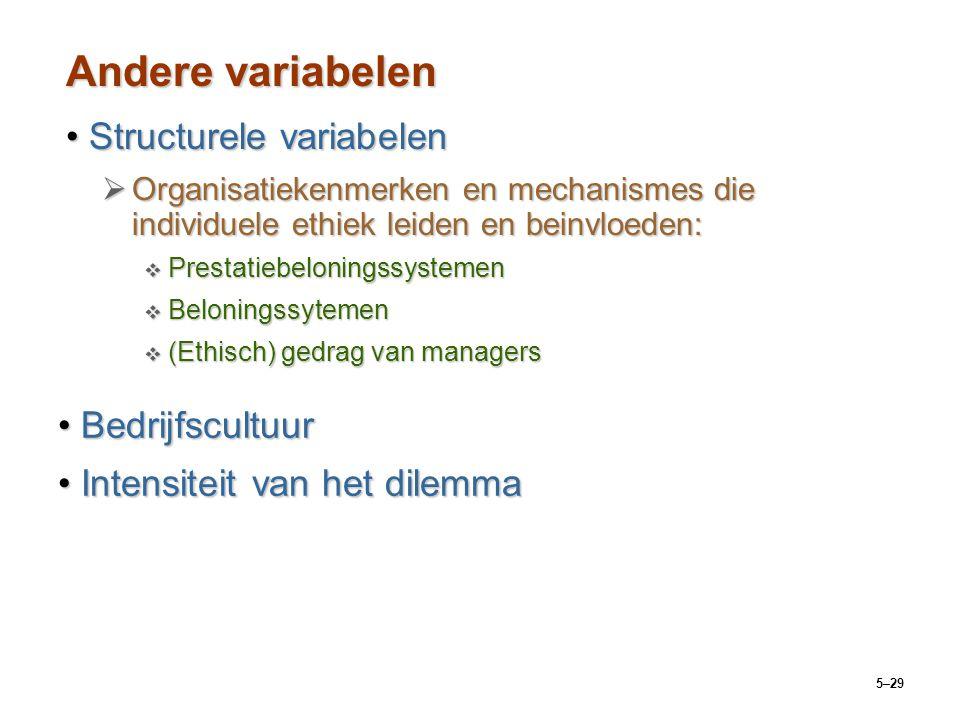 Andere variabelen Structurele variabelen Bedrijfscultuur