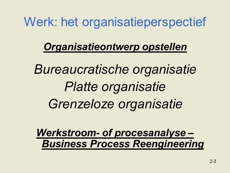 Werk: het organisatieperspectief