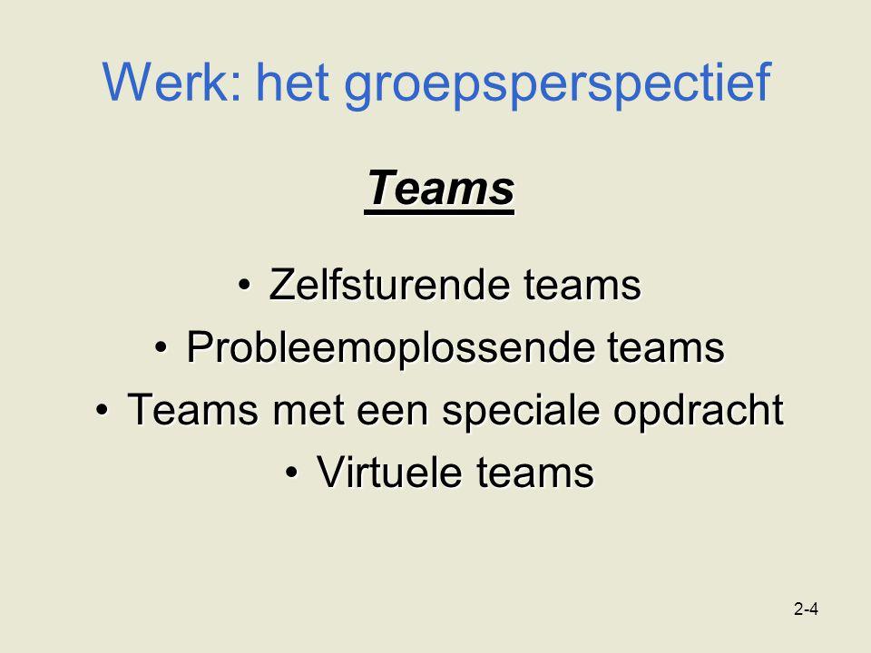 Werk: het groepsperspectief