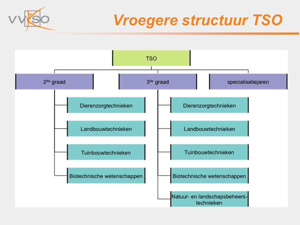 Vroegere structuur TSO