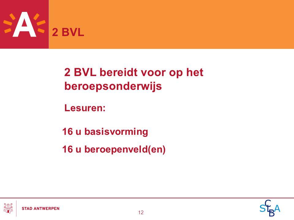 2 BVL bereidt voor op het beroepsonderwijs