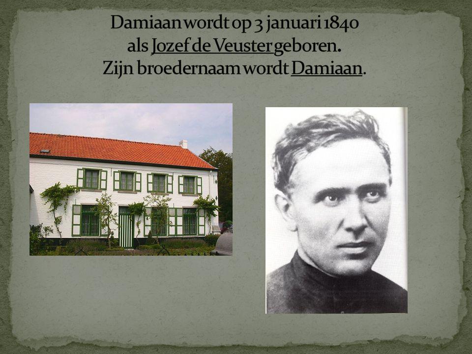 Damiaan wordt op 3 januari 1840 als Jozef de Veuster geboren